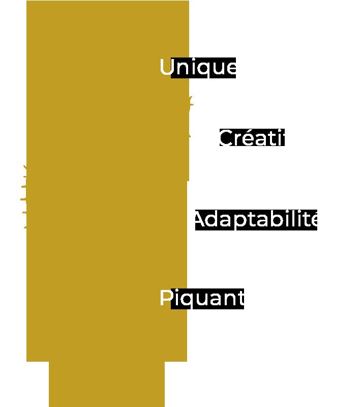 pourquoi cactus